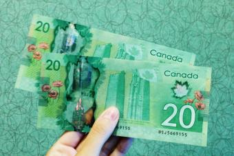 Billetes de 20 dólares canadienses sobre fondo verde