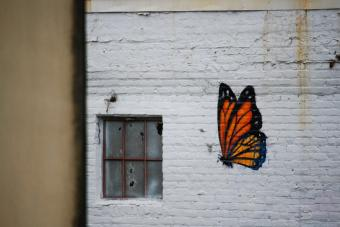 Graffiti de mariposa. Photo by Kristel Hayes on Unsplash